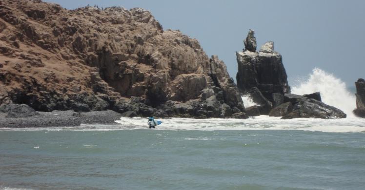 Tiburón em Cerro Azul
