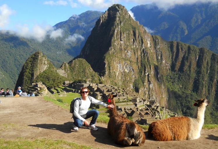 Llamas em Machu Pichu
