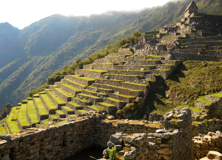 Zona Agrícola - Machu Picchu