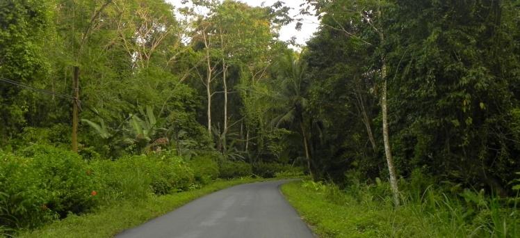 Estrada para Manzanillo