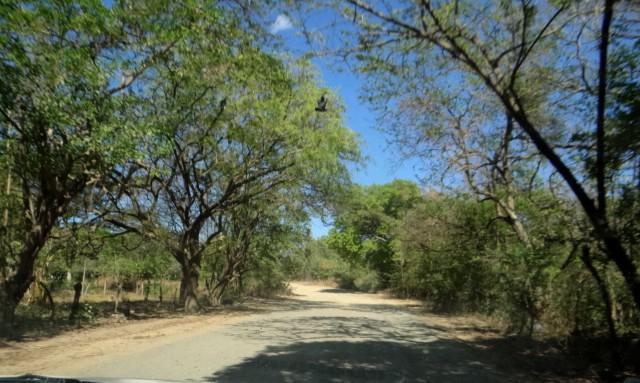 Estradas na região de Tola