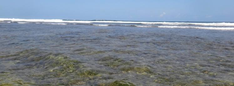 Reef de Uluwatu