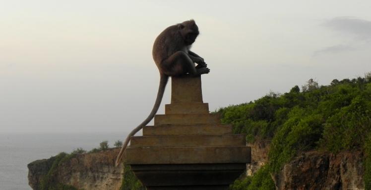 Templo dos Macacos