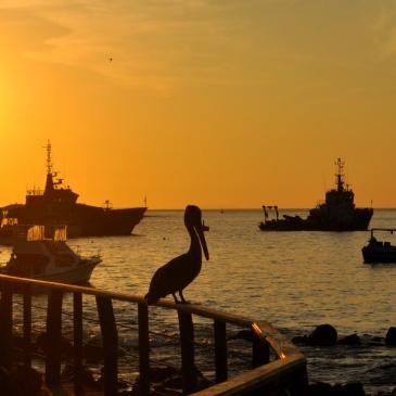 Mais um pôr-do-sol de gala em Galápagos