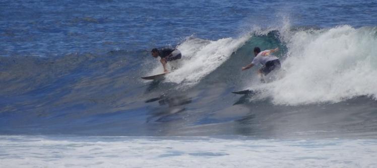 Tiburón em La Loberia