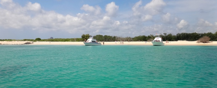 Playa Manglecito