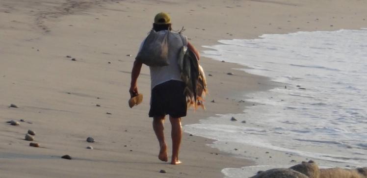 Penca de peixes - Barra De la Cruz