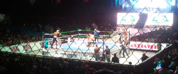 Arena Mexico - Lucha Libre Mexicana