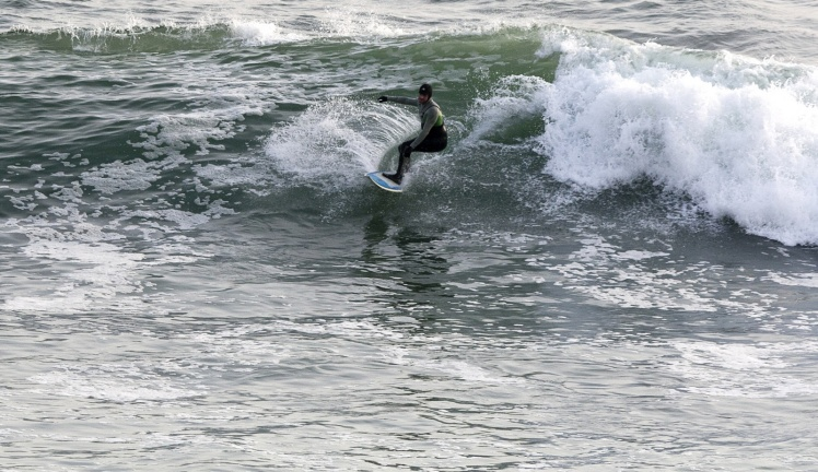 Tiburón em Punta Rocas
