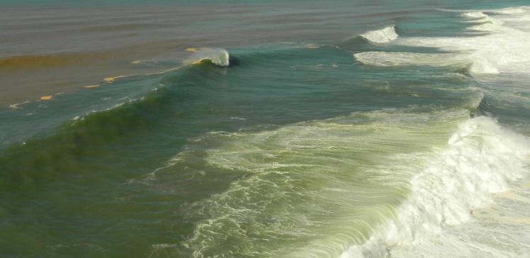 Ondas na Praia do Norte - Nazaré