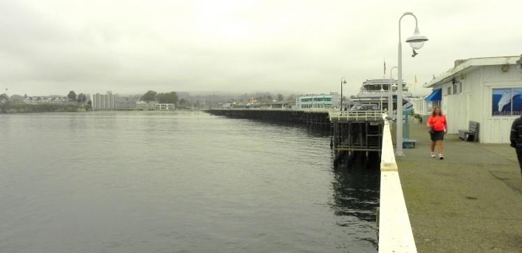 Pier de Santa Cruz