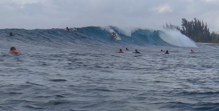 Haleiwa