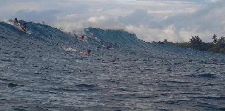 Haleiwa - Na disputa, braçada a braçada