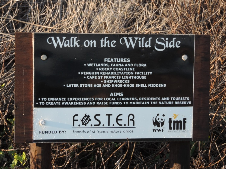 Take a walk on the wild side..