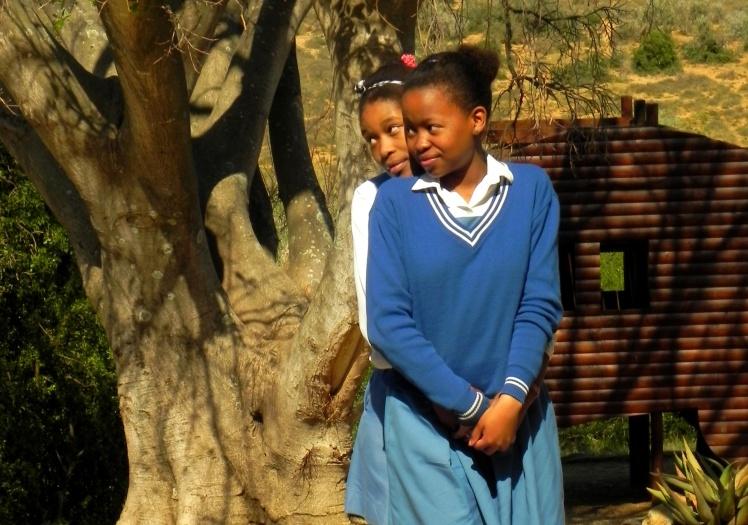 Galerinha sul africana