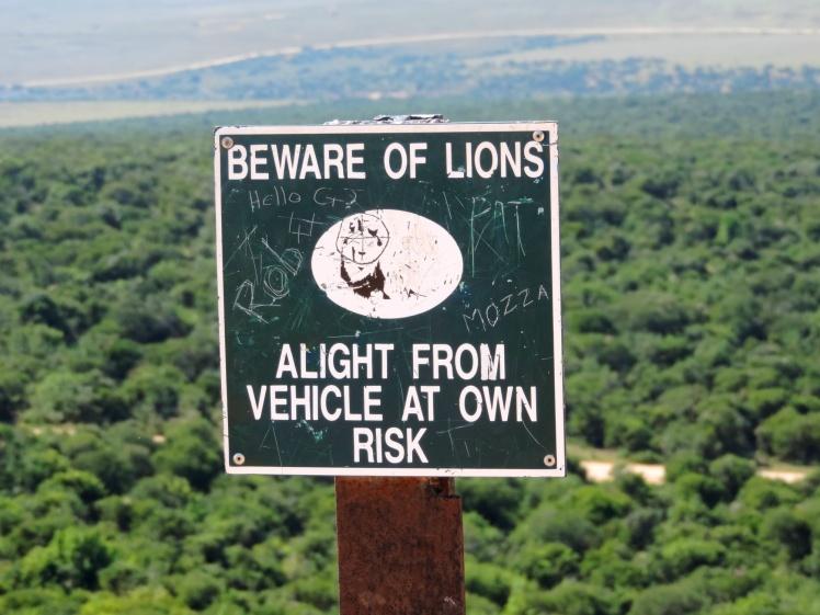 Fique atento aos leões. Deixe o veículo por sua conta e risco!